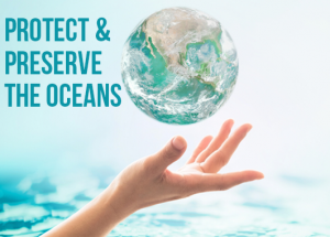 Protect & Preserve the Ocean